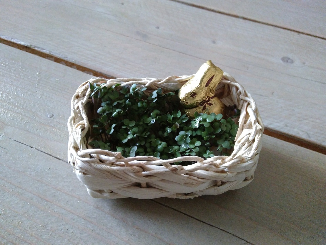 Osternest aus Sprossen